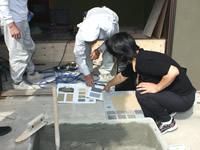 壁材を検討